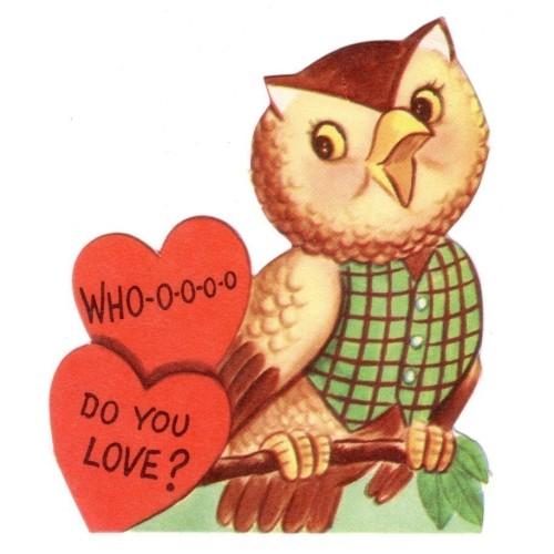 owl vintage